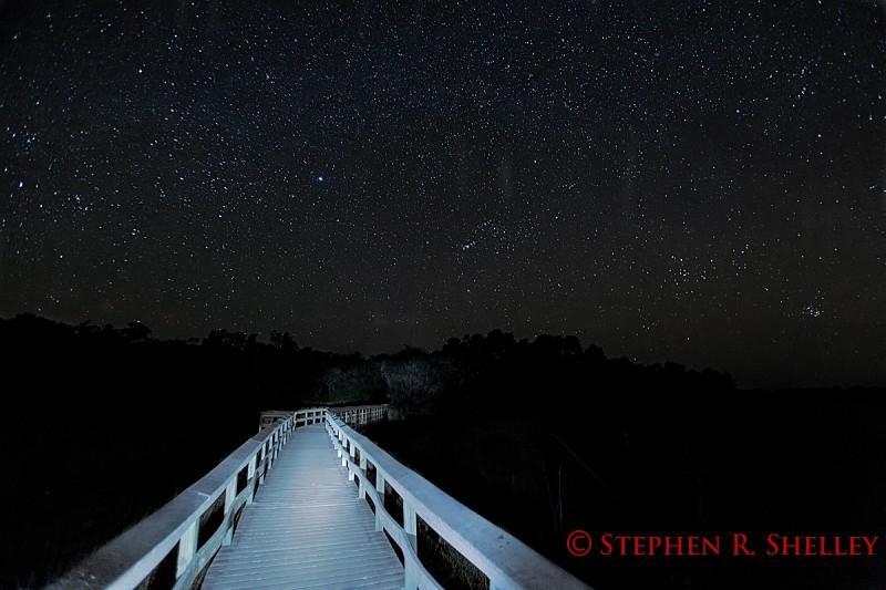 IMAGE: http://www.stephenshelleyphotography.com/photoblog/wp-content/uploads/2013/12/M66A6480-e1386971851757.jpg