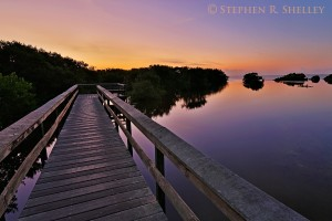 Snakebight Boardwalk Sunrise