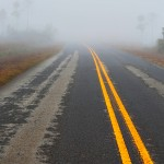 Everglades National Park Foggy Road