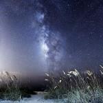 Palm Island Beach Milky Way