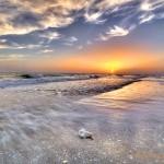 Palm Island Conch Shell Sunset