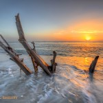 Palm Island Driftwood Sunset
